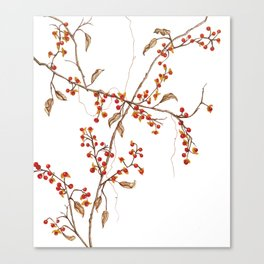 Of red and leaves Canvas Print
