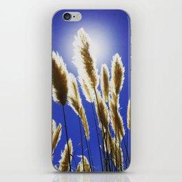 Backlit Blue iPhone Skin