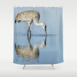 Sandhill Crane and Reflection Shower Curtain