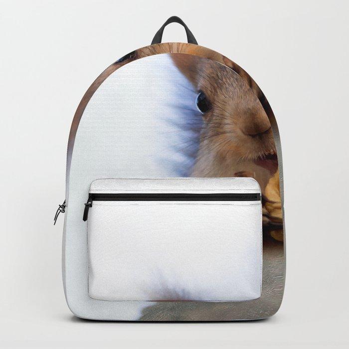 Squirrel Eats A Walnut Backpack