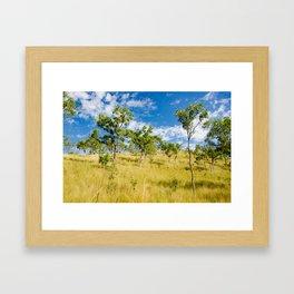 Savannah landscape Framed Art Print