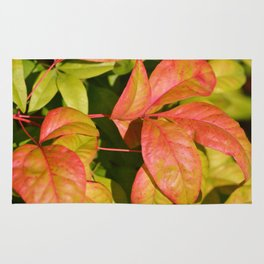 Summery Pink and Green Leaves Rug