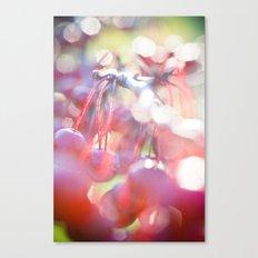 Red Orbs Canvas Print