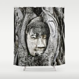 Buddha head entwined in Banyan tree roots. Shower Curtain