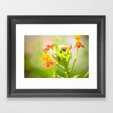 Worlds Unseen Framed Art Print