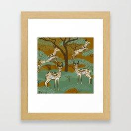 African Springboks Safari Framed Art Print
