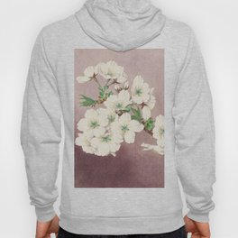 Shirayuki - White Snow Cherry Blossoms Hoody