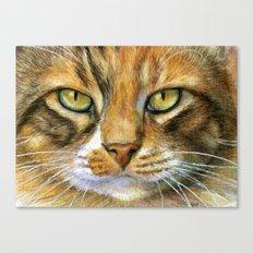 Calico Cat 817 Canvas Print