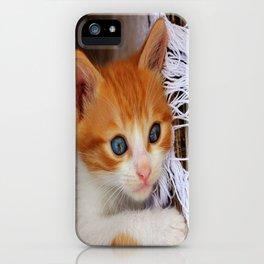 Gorgeous Blue Eyes iPhone Case