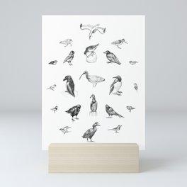 Manx Fauna - (British) Birds Mini Art Print