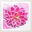 Pretty in Pink Dahlia by carolfleetdesigns
