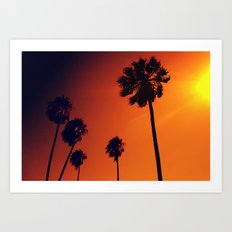 Palm Trees in the Sun Art Print