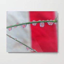 drops of flags Metal Print
