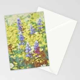 Colors 164 Stationery Cards