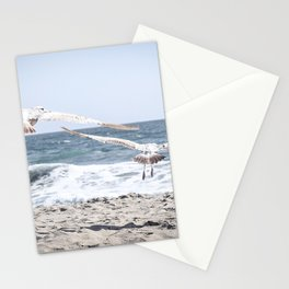 Seagulls in Flight Modern and Vintage Beach Aesthetic Photography of Seagull Birds Flying in Sky Stationery Cards
