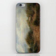 Sand Dunes. iPhone & iPod Skin