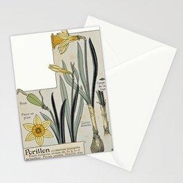 Maurice Pillard Verneuil - Étude de la plante (1903): Wild Daffodil Stationery Cards