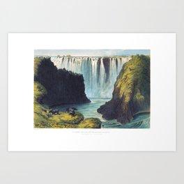 Cape Buffalo at Victoria Falls Art Print