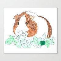 guinea pig Canvas Prints featuring Guinea Pig Clover by Elena O'Neill