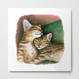 Cat 603 Metal Print