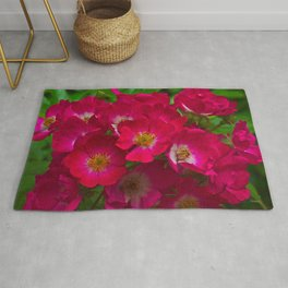 A Red And White Landscape Rose Rug