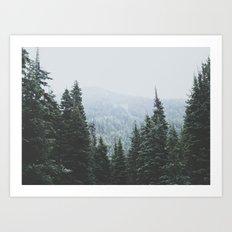 Forest Window Art Print