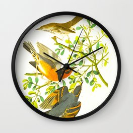 Mountain Mocking bird and Varied Thrush Wall Clock