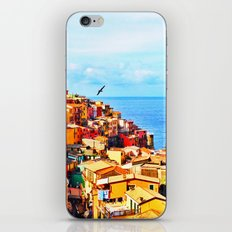 Cinque Terre COLOR iPhone & iPod Skin