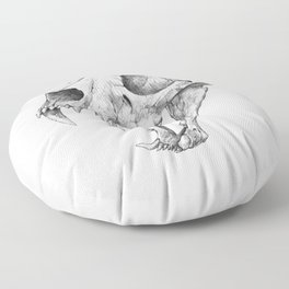 Dinictis, The 'False Sabertooth Cat' skull | Graphite Pencil Art Floor Pillow