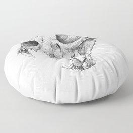 Dinictis, The 'False Sabertooth Cat' skull   Graphite Pencil Art Floor Pillow