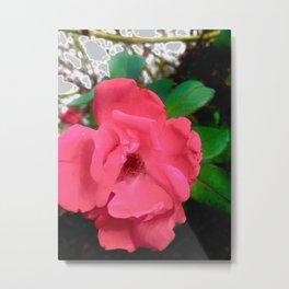 Simple Pink Flower Blooming in Albuquerque Metal Print