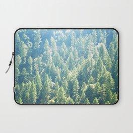 California trees Laptop Sleeve