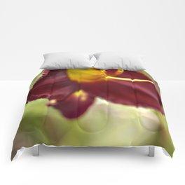 Velveteen Comforters