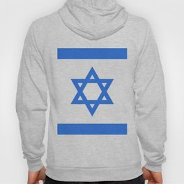 Israel Flag Hoody