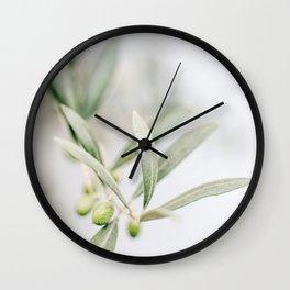 Rustic Olive Branch. Minimalistic print - fine art photography Wall Clock