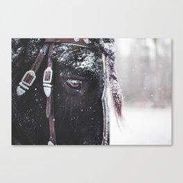 Winter Hill Tacoma Canvas Print
