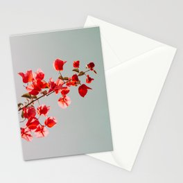 Pink Bougainvilleas Stationery Cards