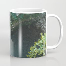 Natural Falls Coffee Mug