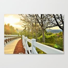Blossomed Way Canvas Print