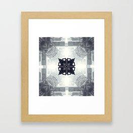 lal Framed Art Print