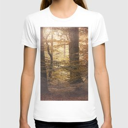 Autumn Came, With Wind & Gold. T-shirt