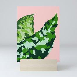 Aglaonema pictum tricolor Mini Art Print