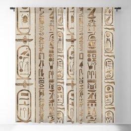 Egyptian hieroglyphs Pastel Gold Blackout Curtain
