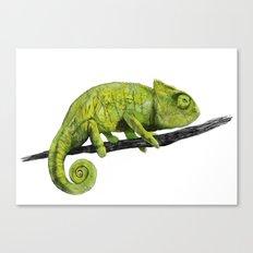 Nice Chameleon Canvas Print