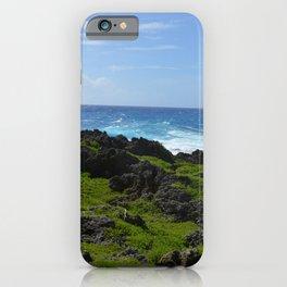 Earth, Sea, & Sky iPhone Case