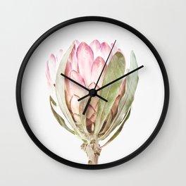 Pink Protea Flower Wall Clock