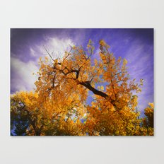 Hollow Canvas Print