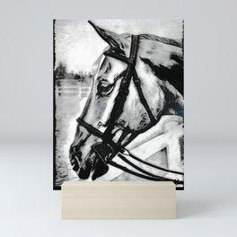 'Content' Original Equine Artwork, Horse Wall Art. EQUESTRIAN Decorating, Original Hand-Drawn Mini Art Print