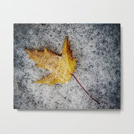 a yellow leaf with snow Metal Print