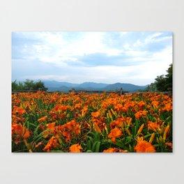 Smoky Mountain Vista Canvas Print